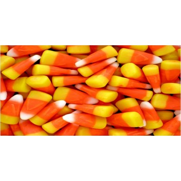 Candy Corn Plate Photo License Plate