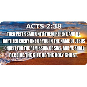ACTS 2:38 Then Peter Said … Baptized Every One Photo License Plate