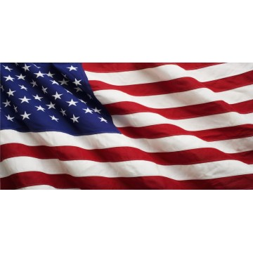 U.S. Wavy Flag Photo License Plate