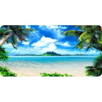 Beach Palms And Mountains Photo License Plate