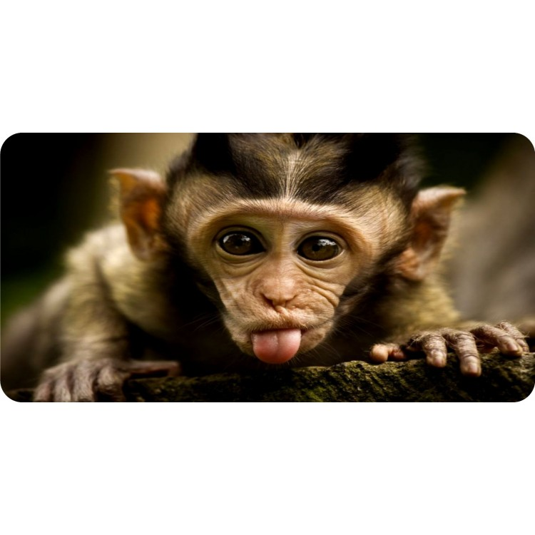 Baby Monkey Sticking Out Tongue Photo License Plate