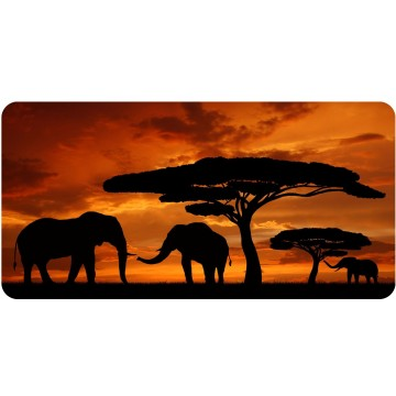 Elephants With Sunset Silhouette Photo License Plate