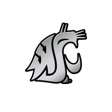 Washington State Cougars NCAA Plastic Auto Emblem
