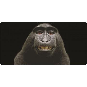 Baboon Selfie Photo License Plate