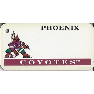 Phoenix Coyotes NHL Key Chain