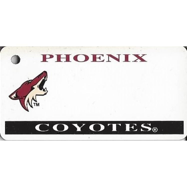 Phoenix Coyotes NHL Key Chain