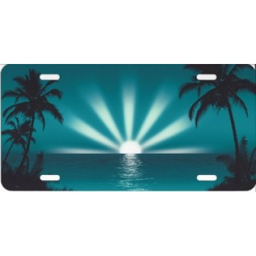 Aqua Sunburst Airbrush License Plate