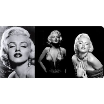 Marilyn Monroe 3 Pictures Photo License Plate