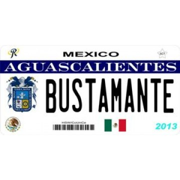 Mexico Aguascalientes Photo License Plate