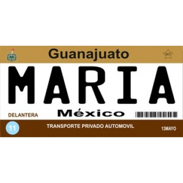 Mexico Guanajuato Photo License Plate