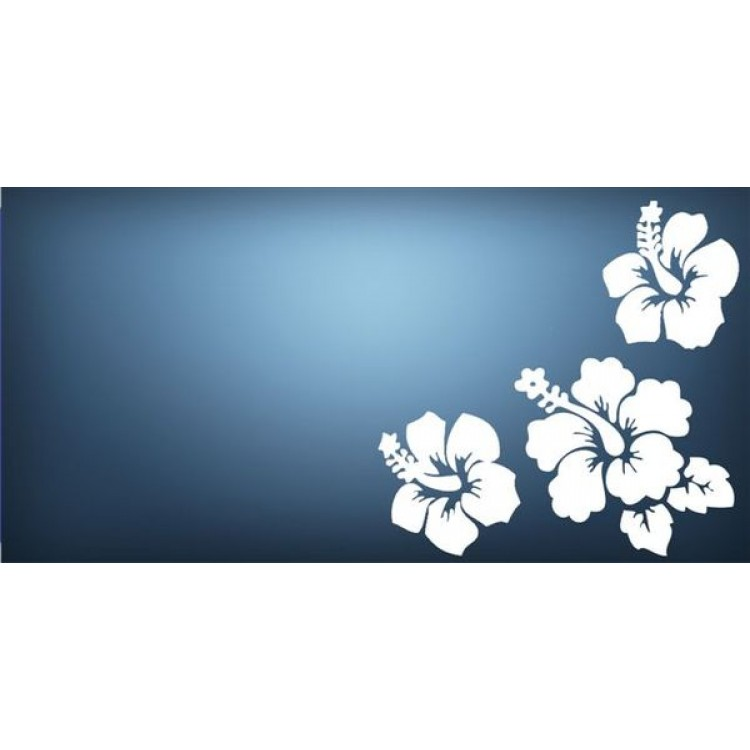 Blue Hibiscus Flower Photo License Plate