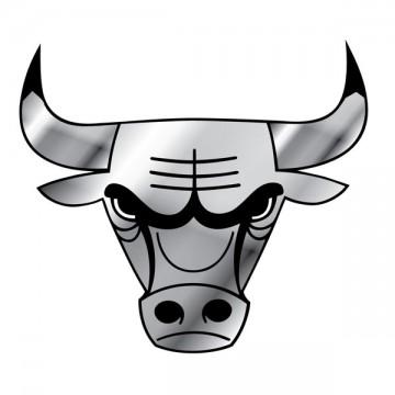 Chicago Bulls NBA Chrome Auto Emblem
