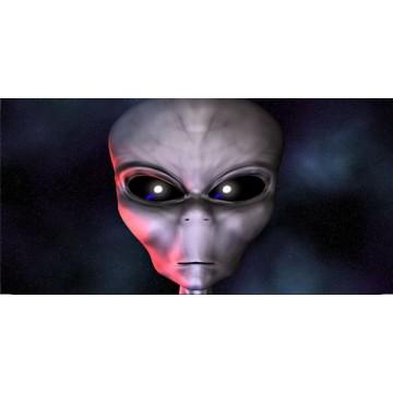 Alien Photo License Plate