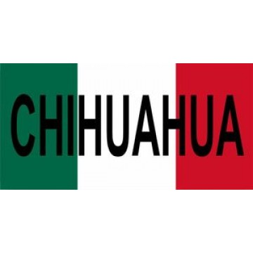 Mexico Chihuahua Photo License Plate
