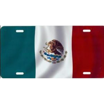 Mexican Flag Airbrush License Plate
