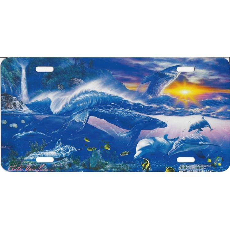 """""""Ocean Scene"""" License Plate"""