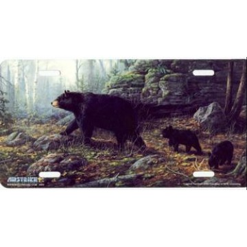 Brown Bears Northern Explorers License Plate