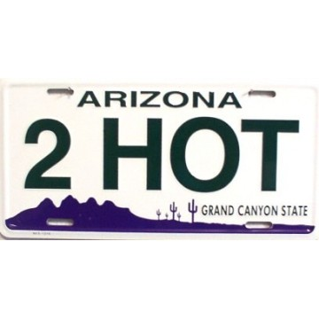 2HOT Metal License Plate
