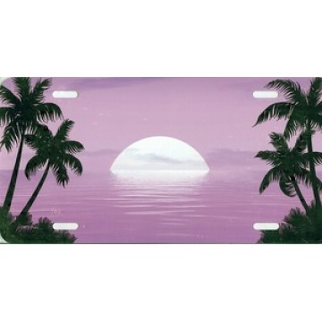 Beach Scene Pink Airbrush License Plate