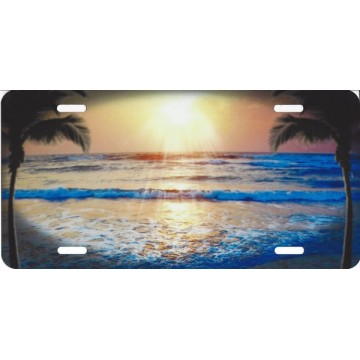 Incoming Tide Beach Palm Airbrush License Plate