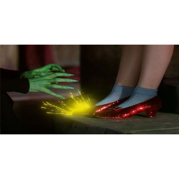 Wizard Of Oz Ruby Slippers Photo License Plate