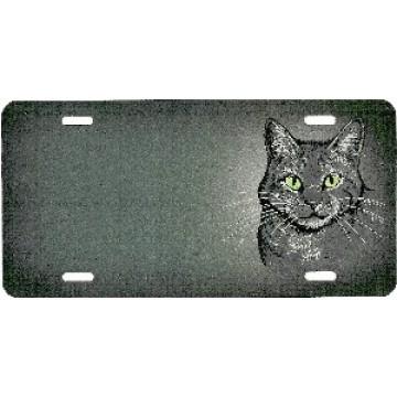 Gray Tabby Cat Airbrush License Plate
