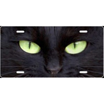 Cat Eyes Green Airbrush License Plate