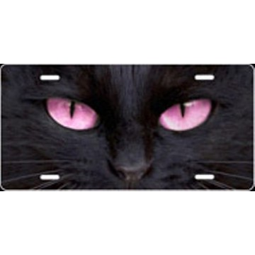 Cat Eyes Pink Airbrush License Plate