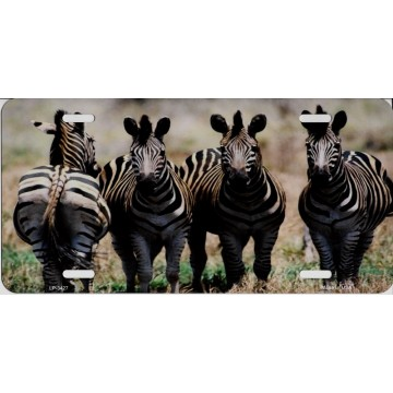 Zebra Dazzle Metal License Plate
