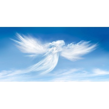 Angel Clouds Photo License Plate
