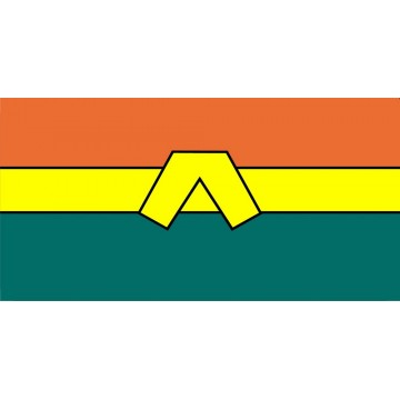 Aquaman Logo Photo License Plate