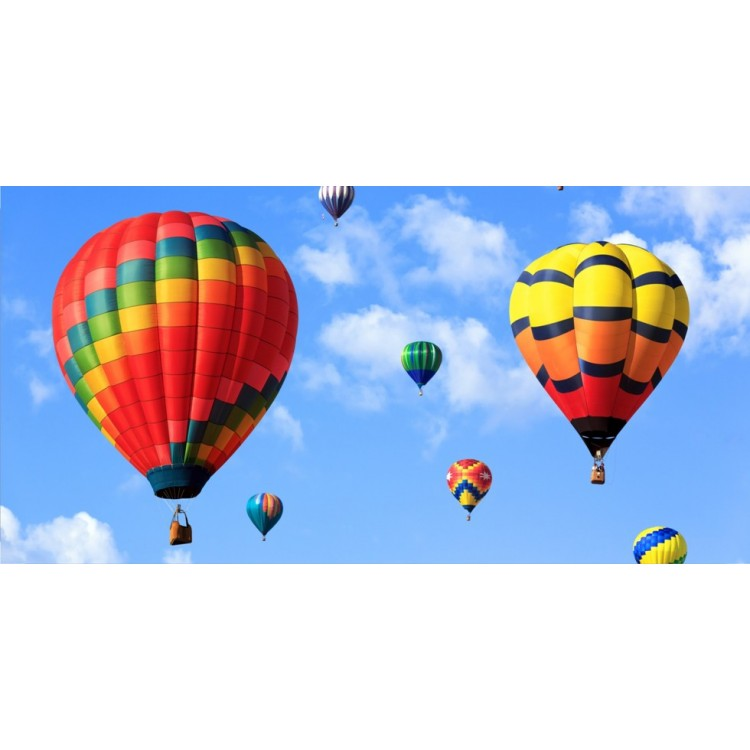 Hot Air Balloons In The Clouds Photo License Plate