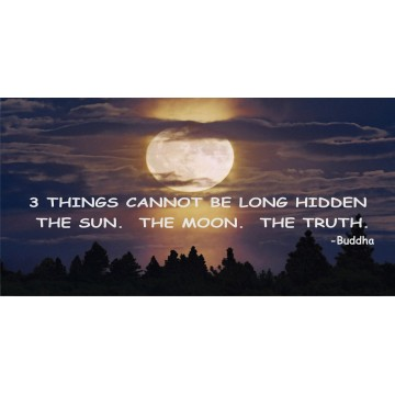 3 Things Cannot Be Long Hidden Moon Photo License Plate