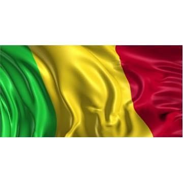 Mali Flag Photo License Plate