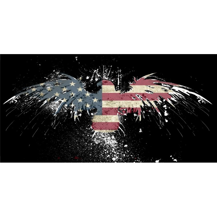 Fireworks Eagle With United States Flag Photo License Plate