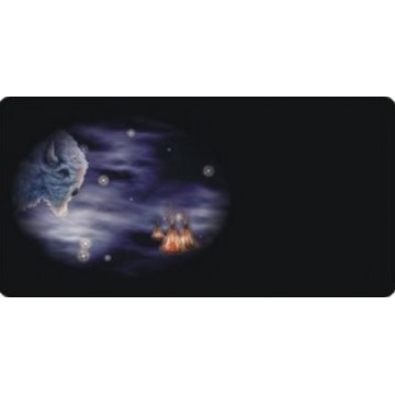 Offset Celestial Buffalo Bison Photo License Plate