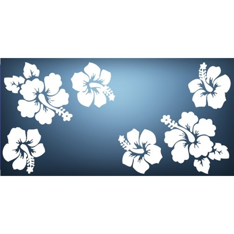 Hibiscus Flowers Photo License Plate