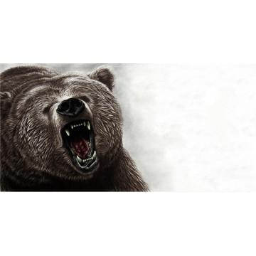 Bear Offset Photo License Plate