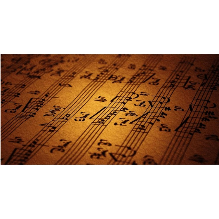 Vintage Music Notes Photo License Plate
