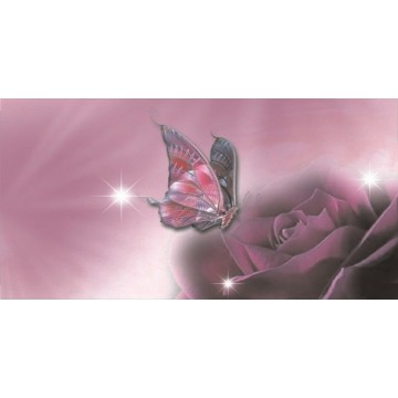 Pink Butterfly And Flower Photo License Plate