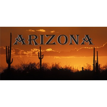 Arizona Desert Sunset Photo License Plate