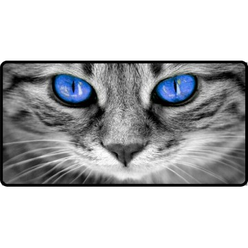 Blue Cat Eyes Photo License Plate