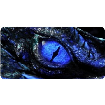 Blue Dragon Eye Photo License Plate