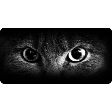 Cat Eyes Black And White Photo License Plate