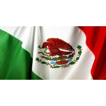 Mexican Flag Waving Photo License Plate