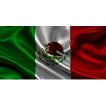 Mexican Flag Photo License Plate