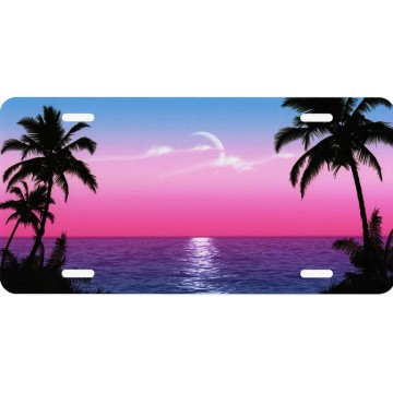 Blue And Pink Scenic Airbrush License Plate