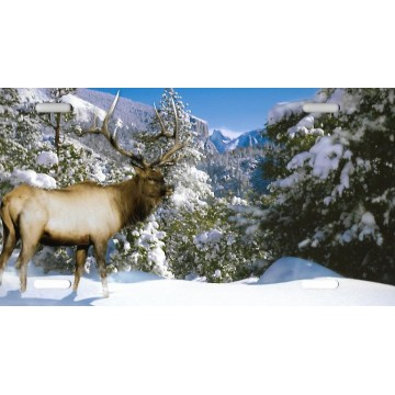 Winter Elk with Mountains License Plate