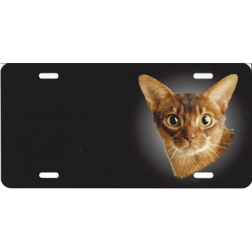 Abyssinian Offset Cat Airbrush License Plate