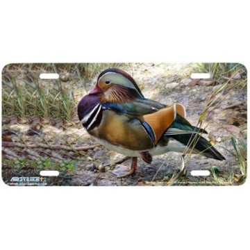 """Mandarin Drake"" License Plate"
